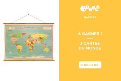 MAGINÉA : carte du Monde Vintage